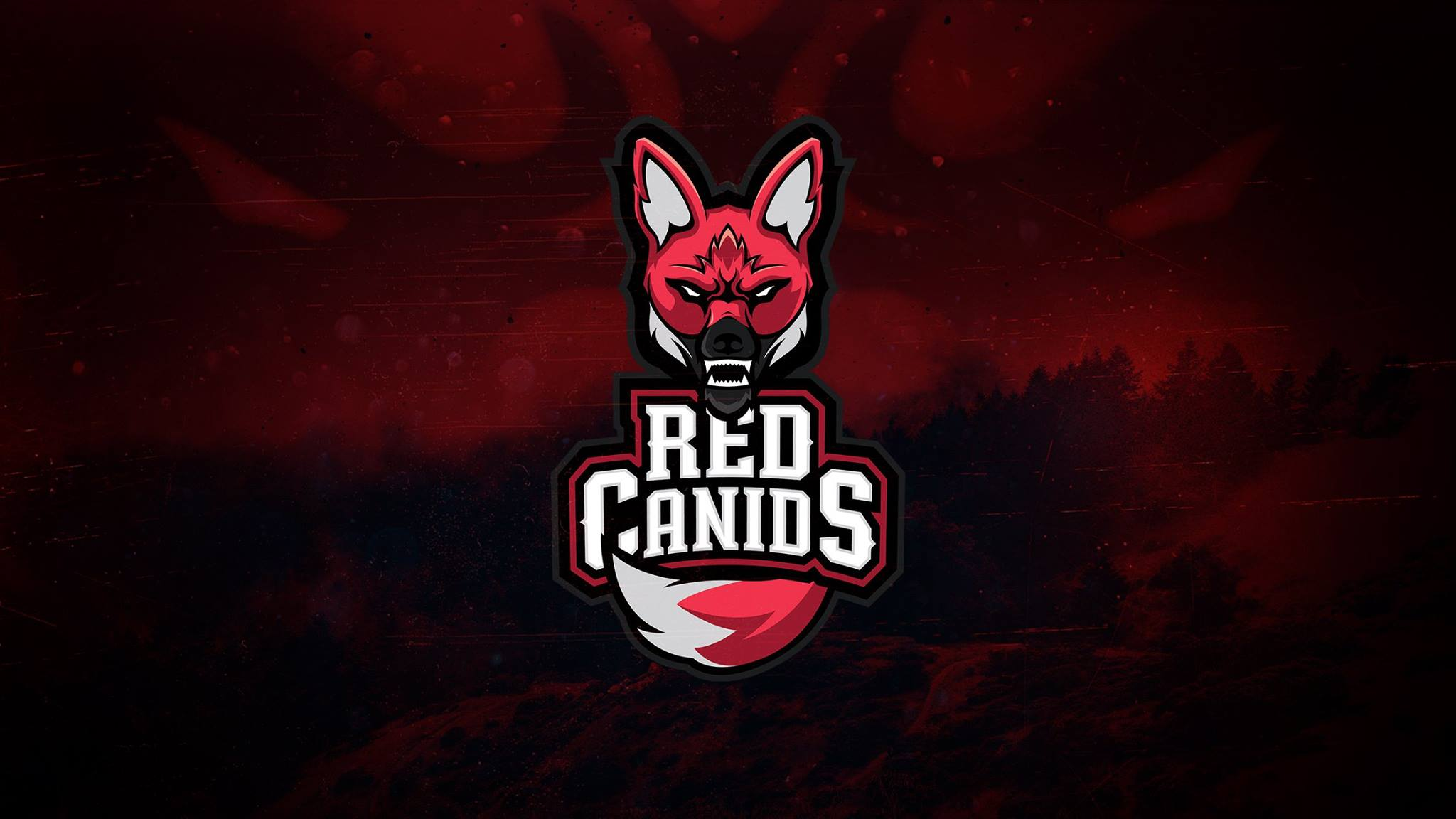 red-canids